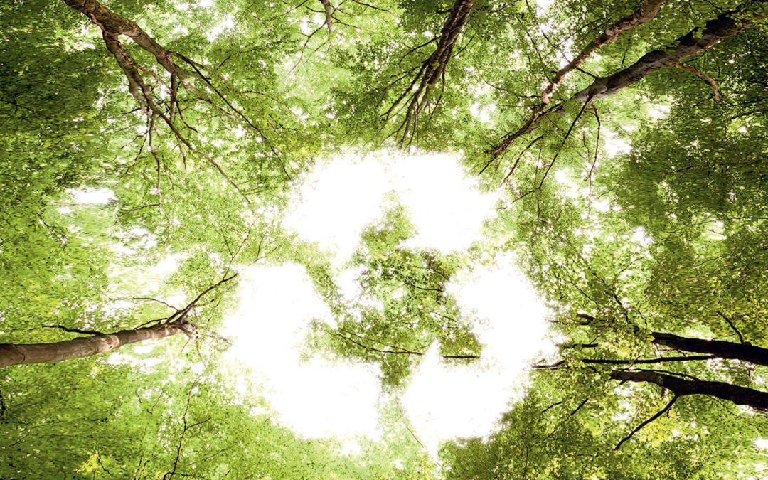 Recycling, the concept of modern business
